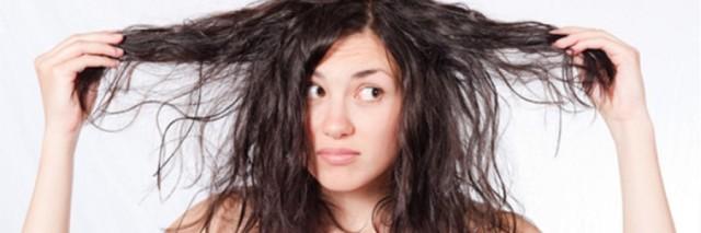 remedios-caseros-para-cabello-reseco1